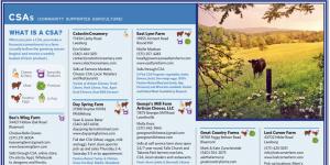 Loudoun County Guide