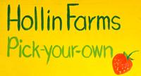 Hollin Farms logo